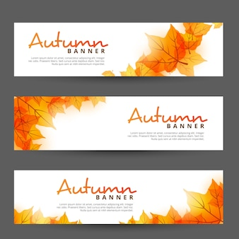 Set of autumn/fall banner with orange falling leaves
