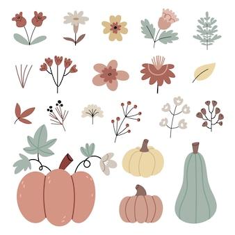 Set of autumn garden plantspumpkins autumn flowers  and berries dry leaves