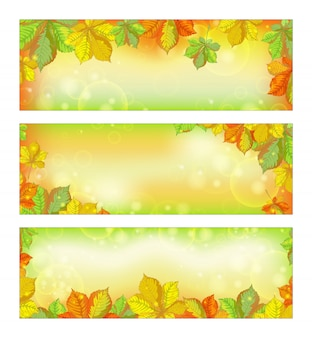 Set of autumn horizontal banners with fallen chestnut leaves .