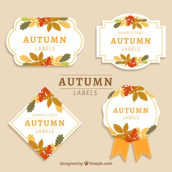Set of autumn labels with colorful leaves