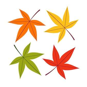 A set of autumn maple leaves of different colors on a white isolated background