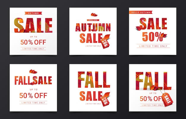 Set of autumn sale banner decorate with dry leaves in square size for instragram