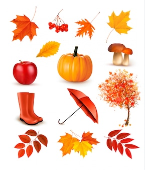 Set of autumn-themed objects. vector