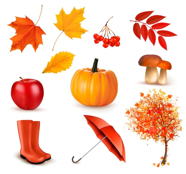 Set of autumn-themed objects.