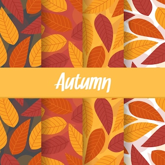 Set background of autumn fall leaf seamless pattern