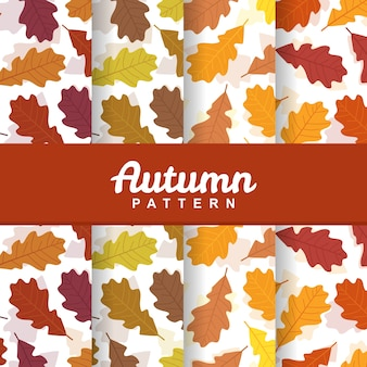 A set background of autumn fall leaves seamless pattern