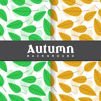 Set background of autumn leaves seamless pattern
