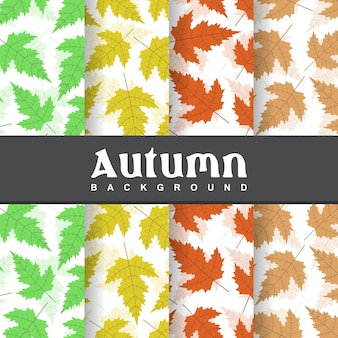 Set background of autumn palm leaves seamless pattern