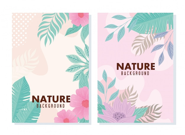Set of background tropical and flowers with leaves pastel color