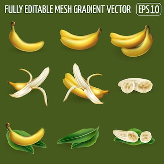Set of banana compositions - whole bananas, peeled slices and palm leaves. realistic illustration.