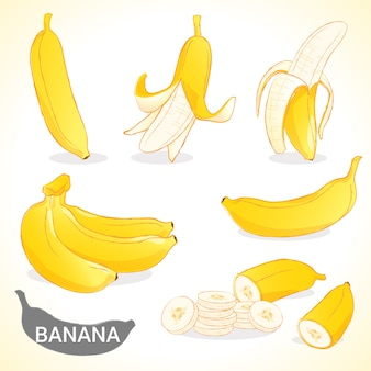 Set of banana in various styles vector format