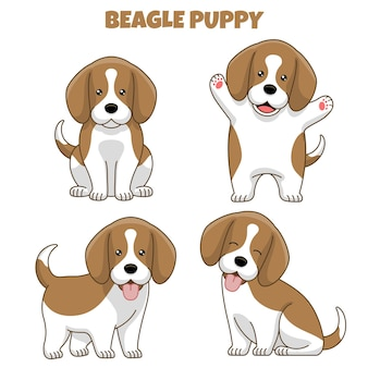 Set of beagle dog puppy in cartoon style