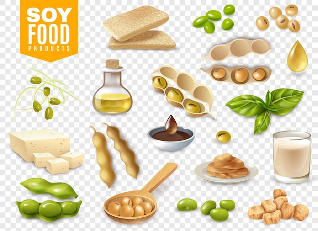Set of beans with plant leaves and soy food products isolated on transparent illustration