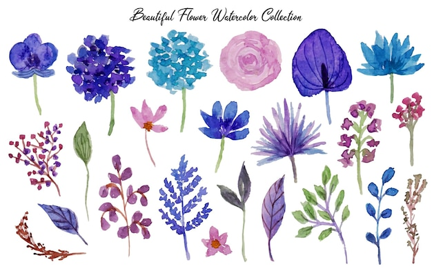A set of beautiful hand drawn flower watercolor