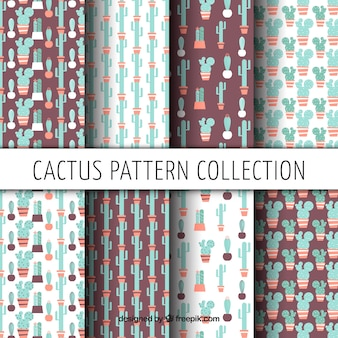 Set of beautiful vintage patterns of cactus in flat design