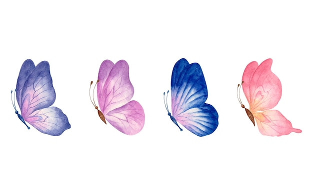 Set of beautiful watercolor hand drawn butterfly set isolated on white