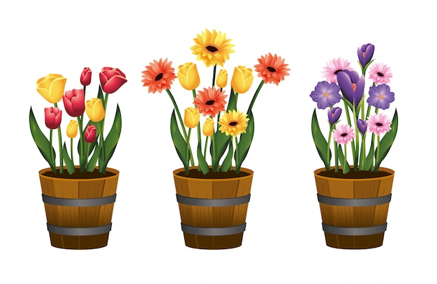 Set beauty flowers plants with leaves inside flowerpot