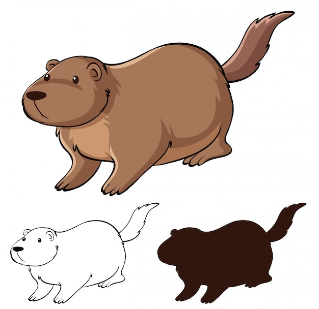 Set of beaver cartoon