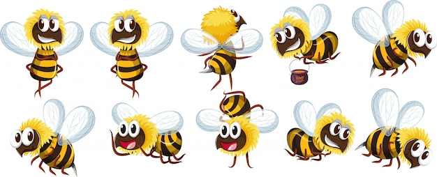 Set of bee character