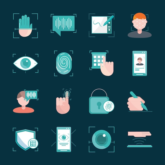 Set of biometric verification authorizations
