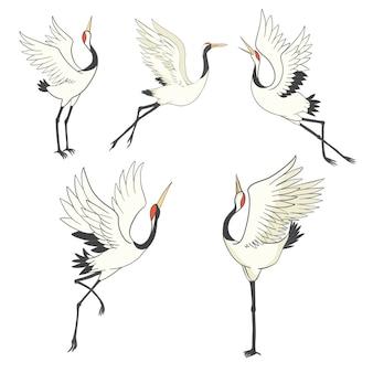 Set of birds. crane, stork, heron.  .