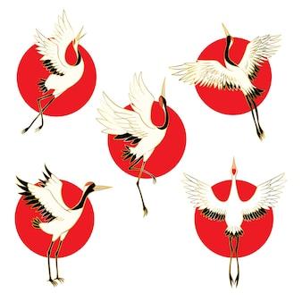 Set of birds crane. white stork.