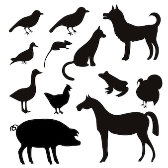 Set of black tropical animals and birds silhouettes.