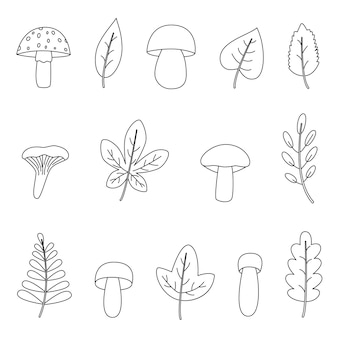 Set of black and white autumn leaves. coloring page for children.