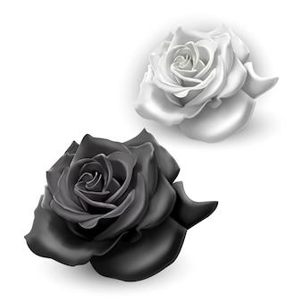 Set of black and white roses