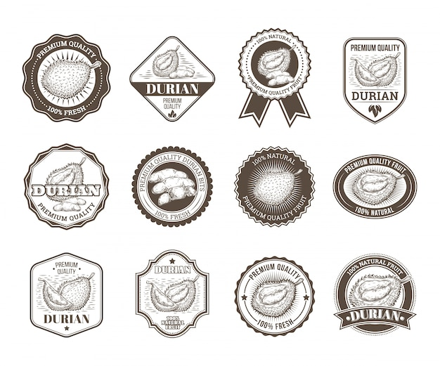 Set of black and white vector badges, stickers, high quality signs, with durian fruit