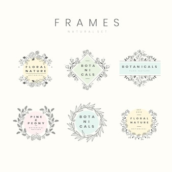 Set of botanical frame design elements vector