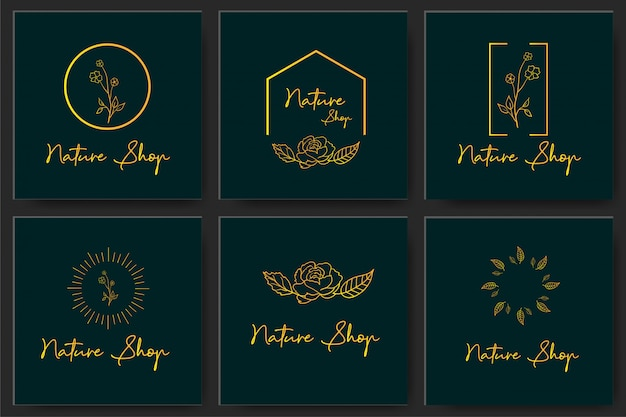 Set botanical frame element design vector
