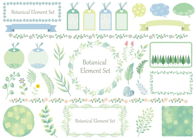 Set of botanical graphic elements and frames isolated on a white