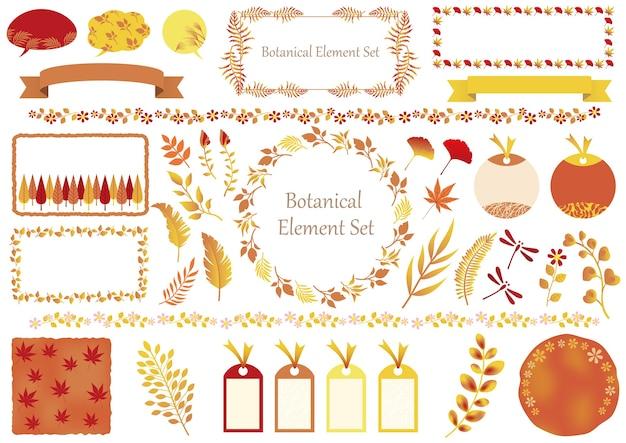 Set di elementi grafici botanici e cornici isolati su un bianco