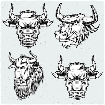 Set of bull heads