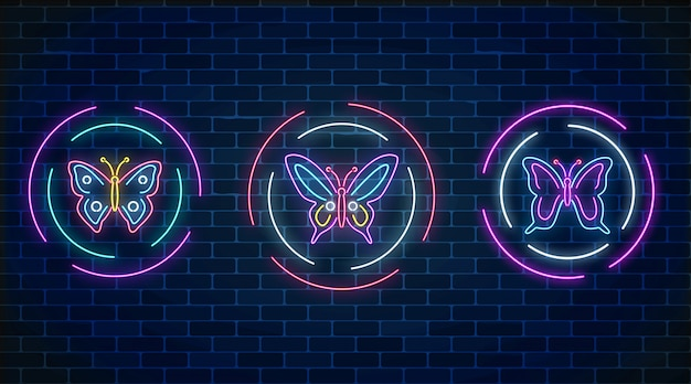Set of butterfly glowing neon signs in round frames on dark brick wall
