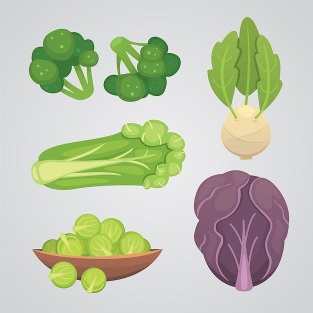 Установите капусту и салат. овощная зеленая брокколи, кольраби, разные виды капусты.