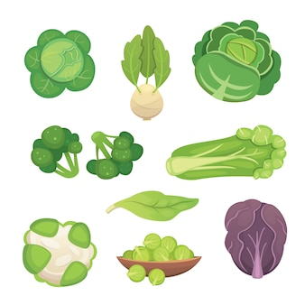 Сет капусты и салата