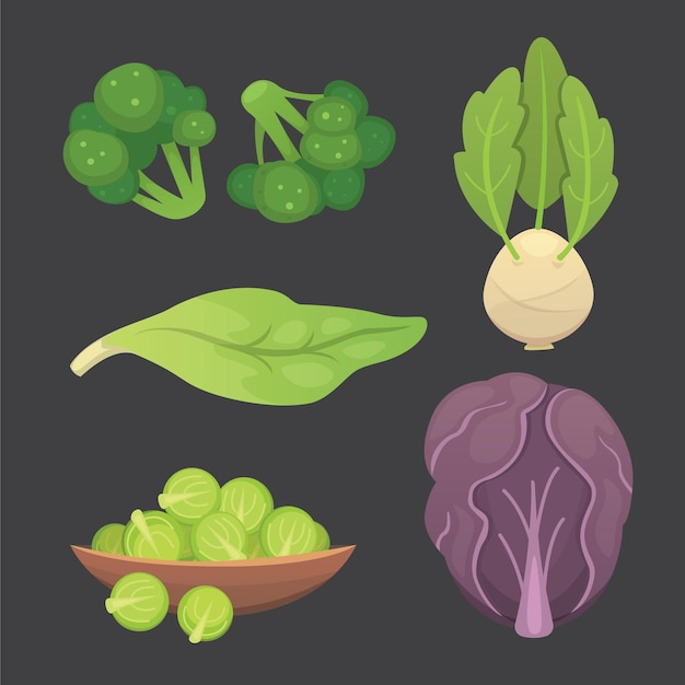 Set cabbage and lettuce