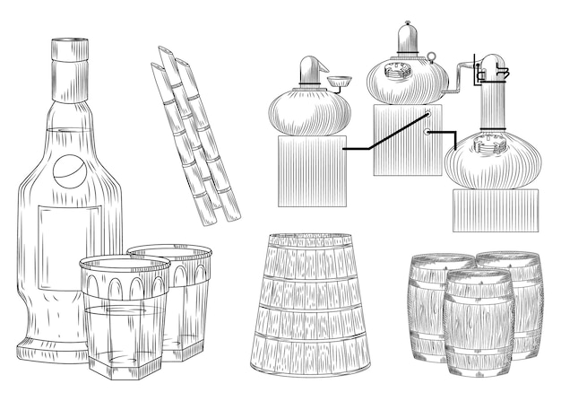 Set cachaca alcohol in doodle style on white background. glass and bottle, cane sugar, barrel, alembic. engraving vintage style black outline vector illustration.