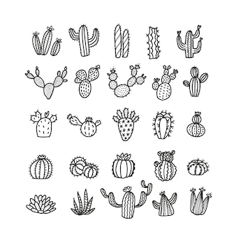 Set of cacti in line style