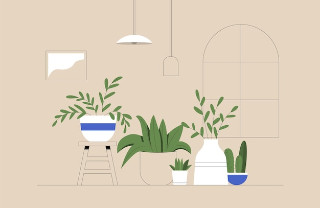 Set of cacti, plants in pots, planters, tropical leaves in cozy room