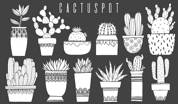 Set cactus pot and succulent in sketch style.