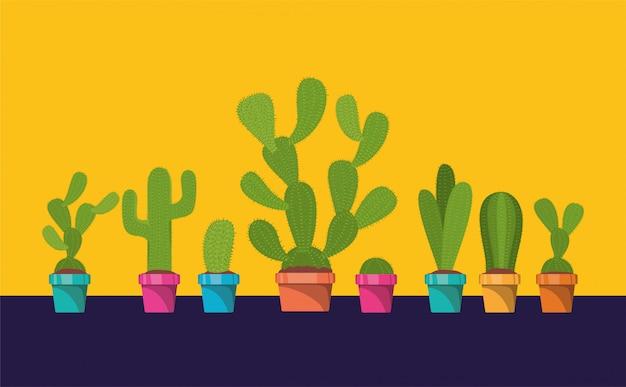 Set of cactus in pot