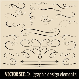 Set of calligraphic and page decoration design elements.
