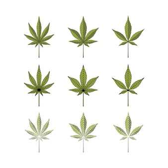 Set cannabis marijuana hemp pot leaf silhouette logo