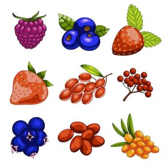 Set of cartoon berries