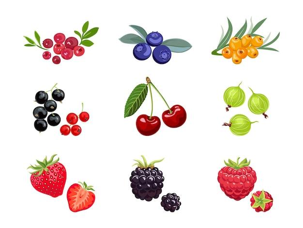 Set of cartoon berry.