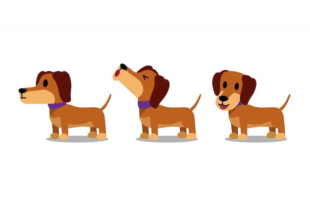 Set of  cartoon character dachshund dog poses