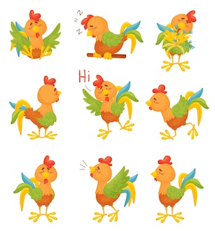 Set of cartoon colorful roosters in different situations